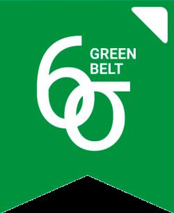 Bandera-SS-Green